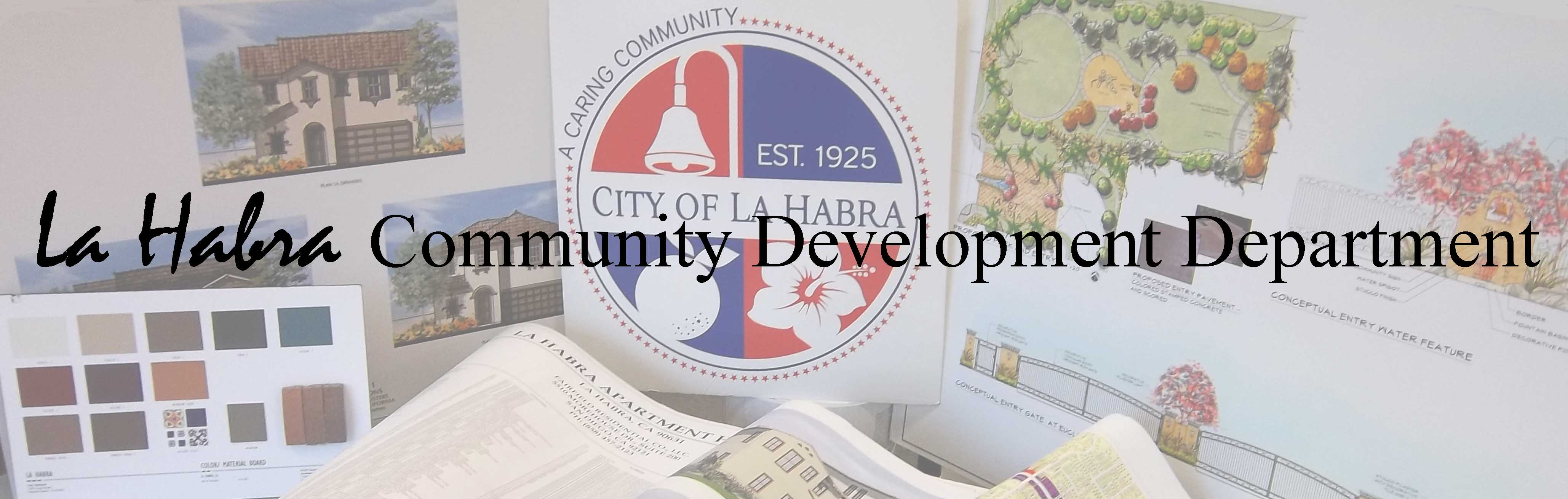 Community Development FINAL